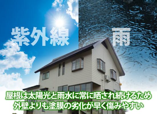 屋根は太陽光と雨水に常に晒され続けるため外壁よりも塗膜の劣化が早く傷みやすい