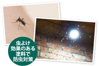 蚊や虫が多くなる夏