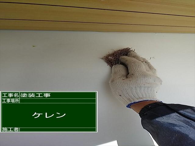 つくば市空き家再生_白壁ケレン_0227_M00035 (1)