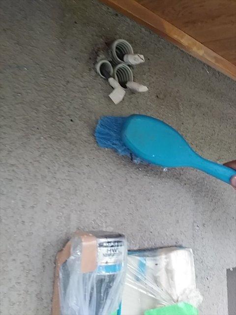 外壁洗浄①0527_a0001(1)004