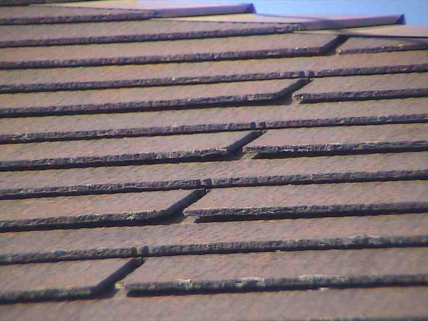 現場調査(屋根)②20020