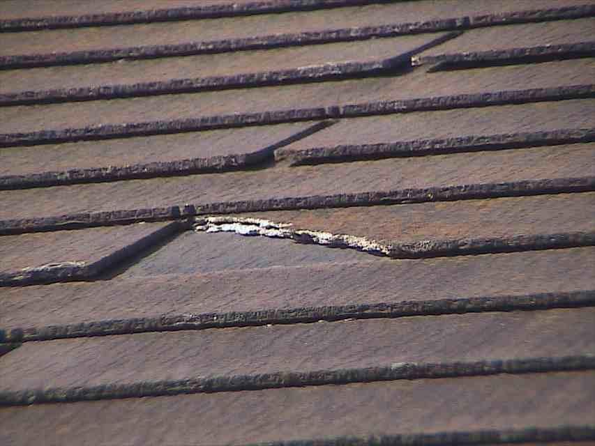 現場調査(屋根)④20020