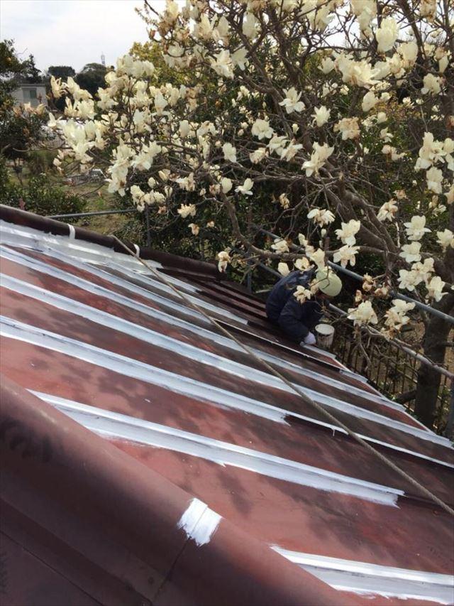 下屋根下塗り20190322