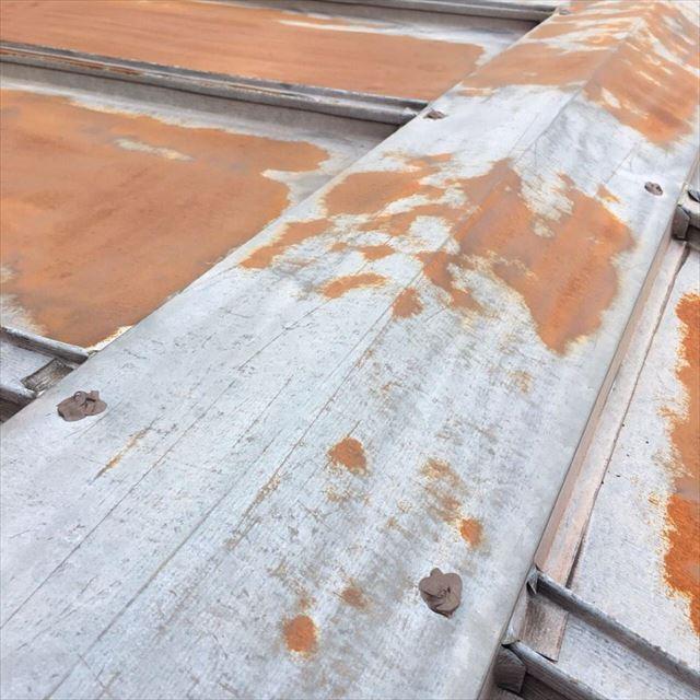 屋根シーリング20190601