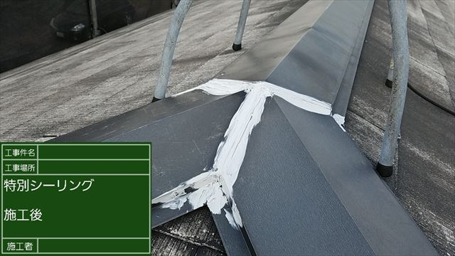 屋根補修20190502