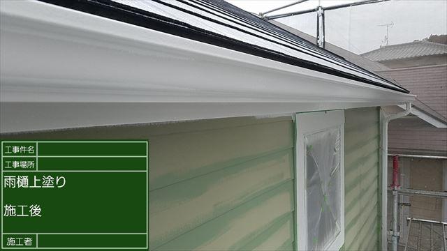 雨樋塗装完了20190406
