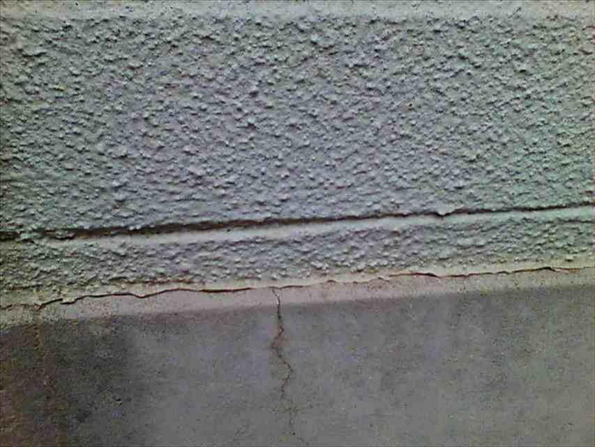 現場調査-外壁20019