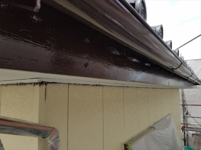 雨樋、破風板完了