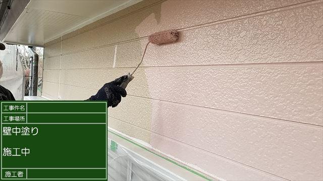 外壁中塗り20190525