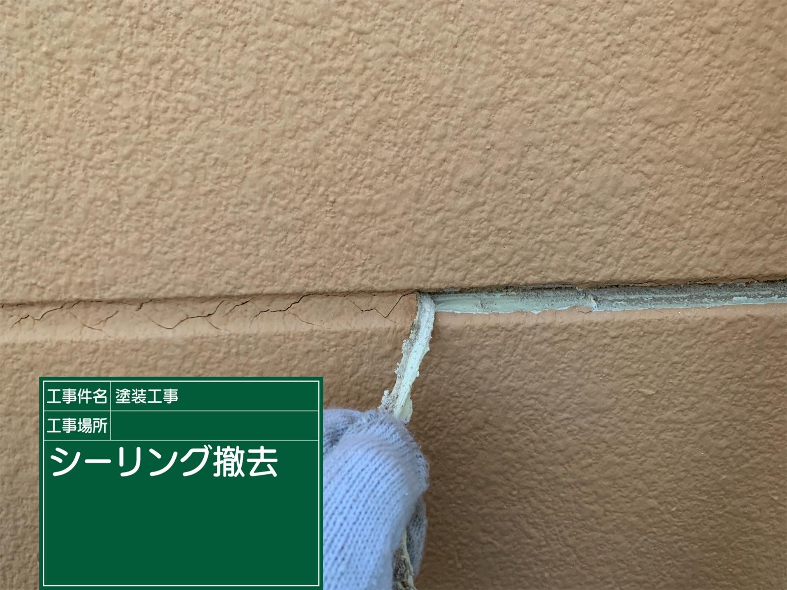 シーリング撤去中(2)300016