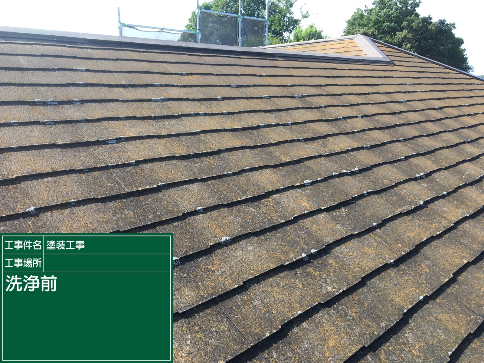 高圧洗浄前屋根(2)300016
