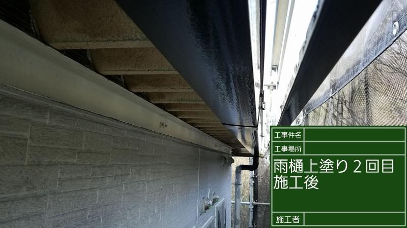 雨樋⑤20026