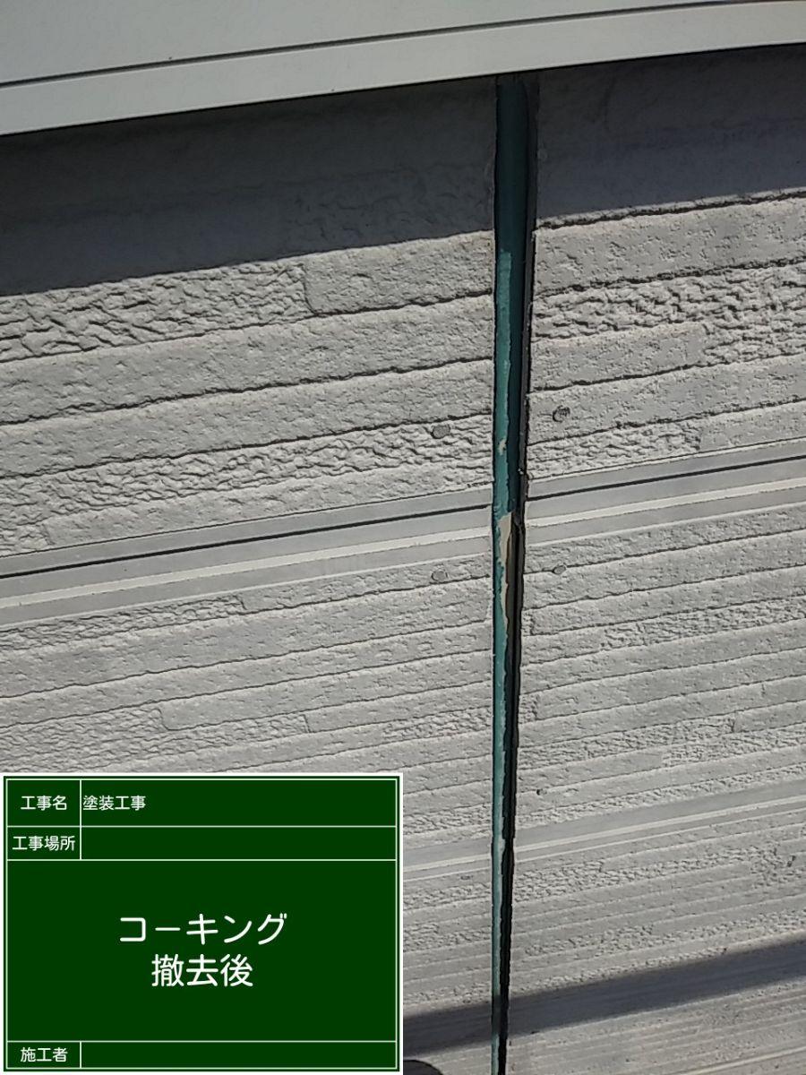 コーキング⑤20029