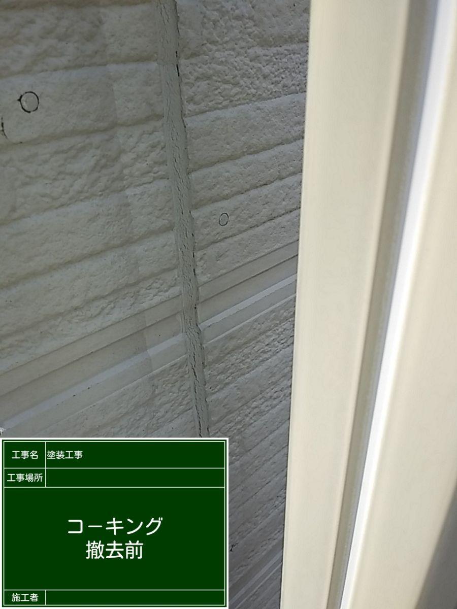 コーキング①20029