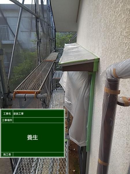 養生①20034