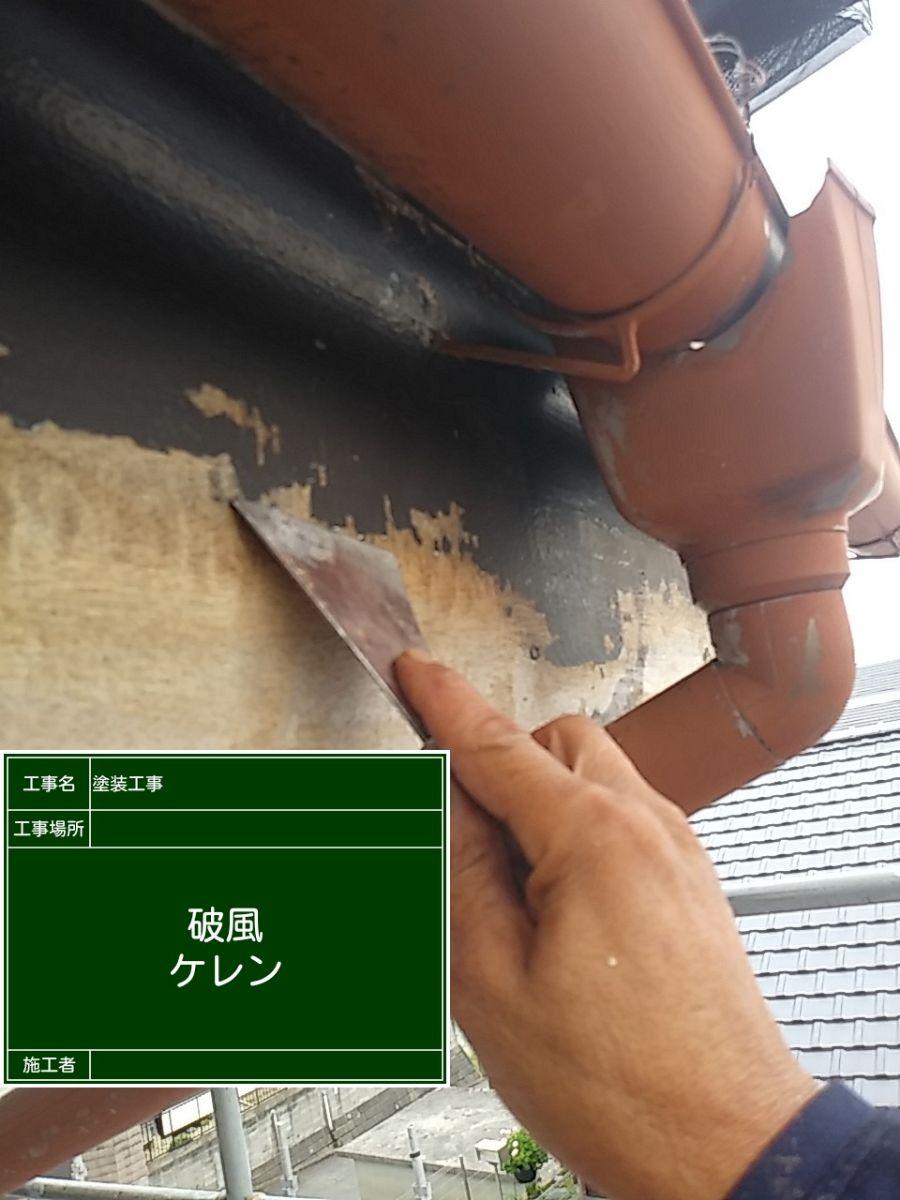樋20034