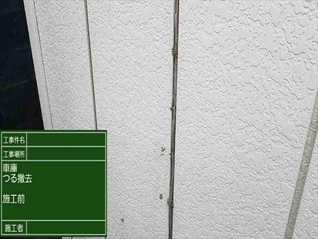 車庫_外壁ツル撤去_ (1)_M00010