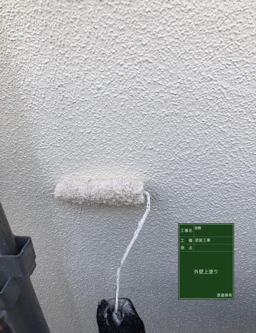 外壁上塗り_M00015