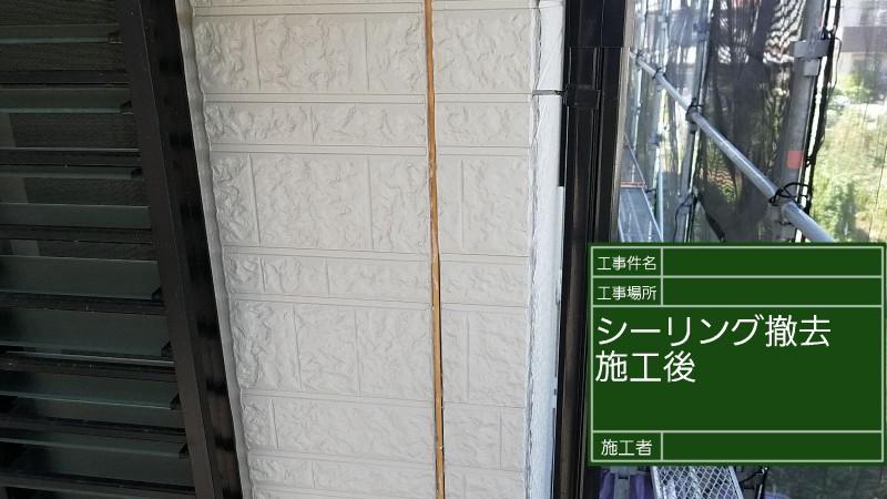 シーリング②20036