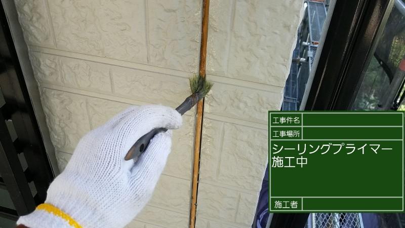 シーリング③20036