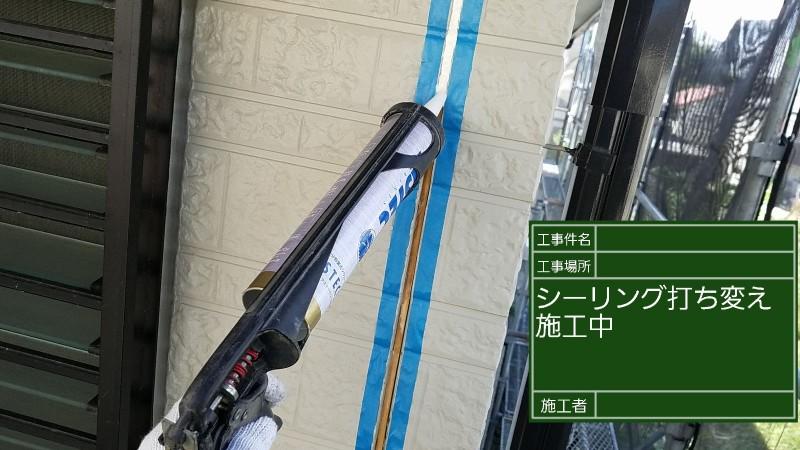 シーリング④20036