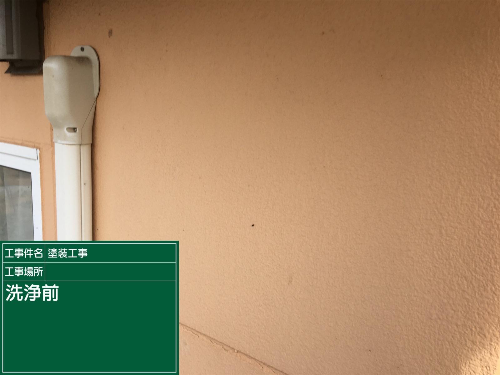高圧洗浄前外壁300016