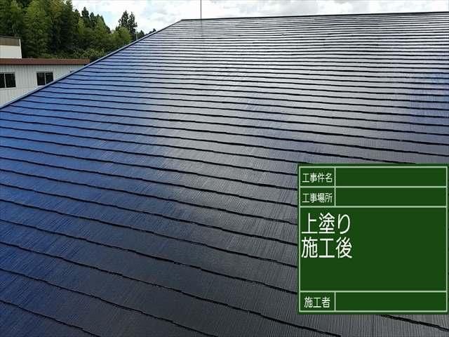 屋根上塗り_0828_M00033 (6)