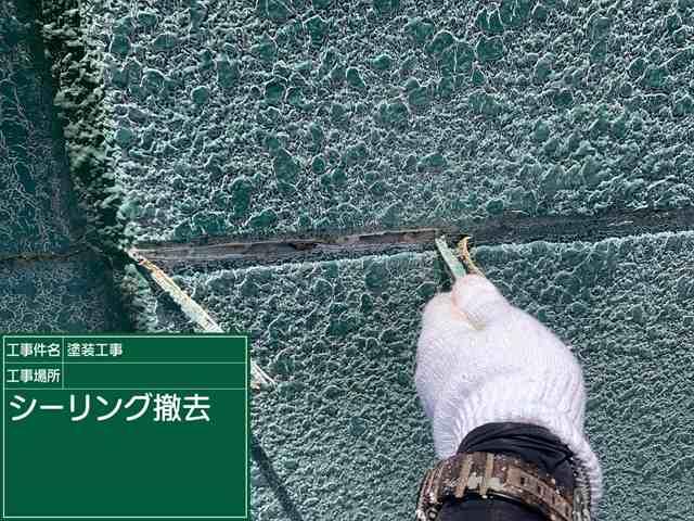 シーリング撤去_0605_M00030 (1)