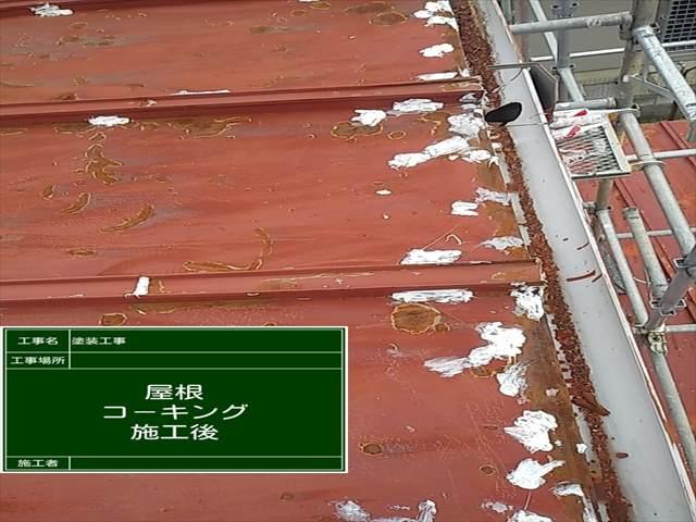 屋根補修_0627_M00032 (2)