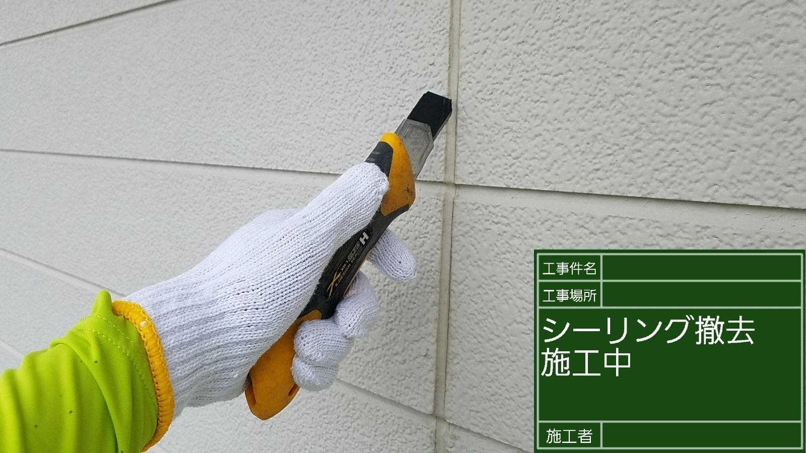 シーリング撤去中(2)300012