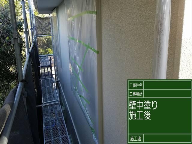 外壁中塗り_0421_M00028 (2)