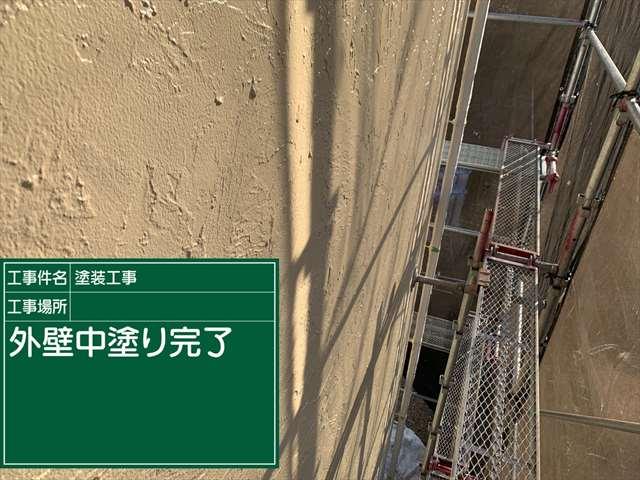0119 外壁中塗り(2)_M00020