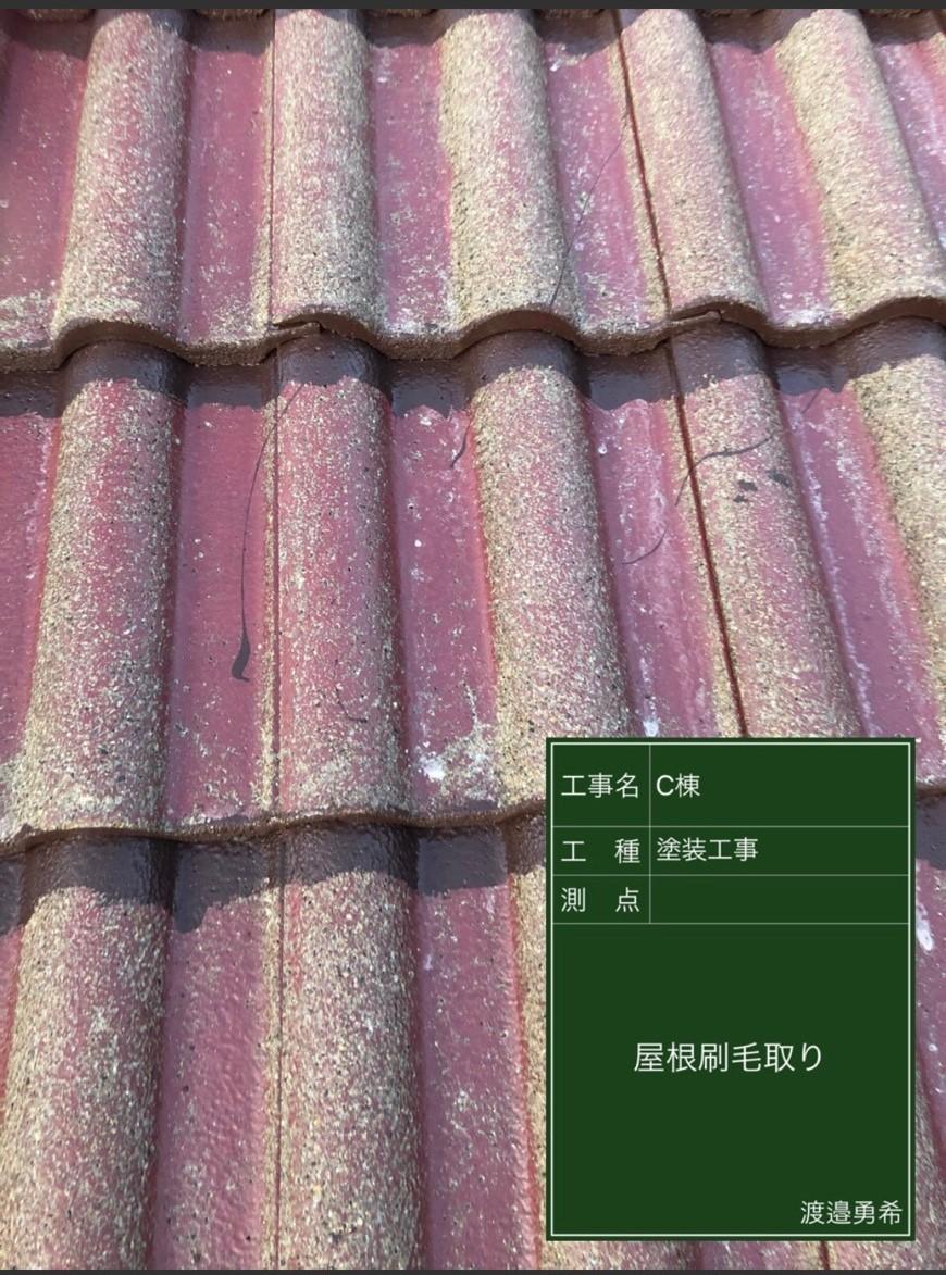 1223屋根刷毛取り_M00015 (1)