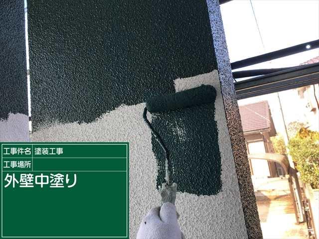 0121 外壁中塗り(1)_M00019