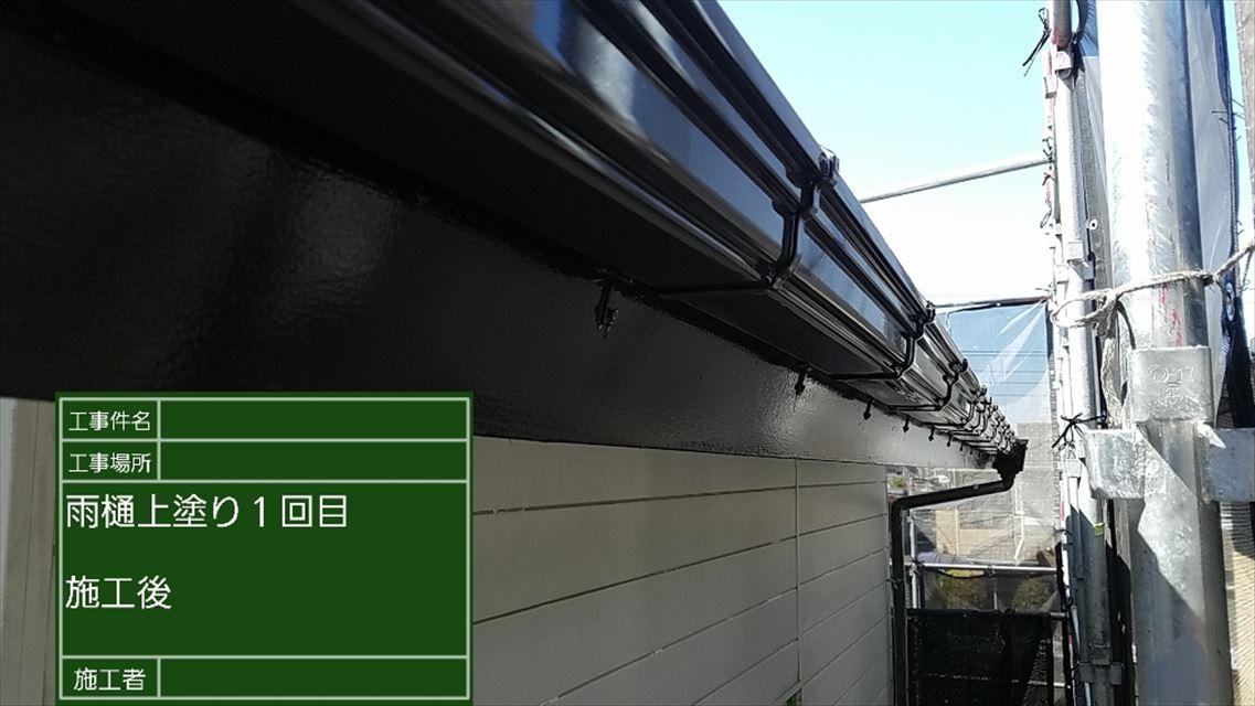 雨樋上塗り1M00002 (2)