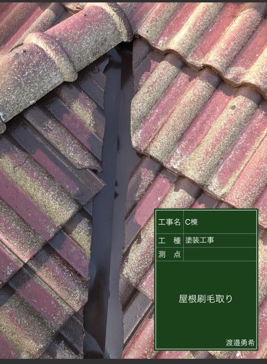 1223屋根刷毛取り_M00015 (2)