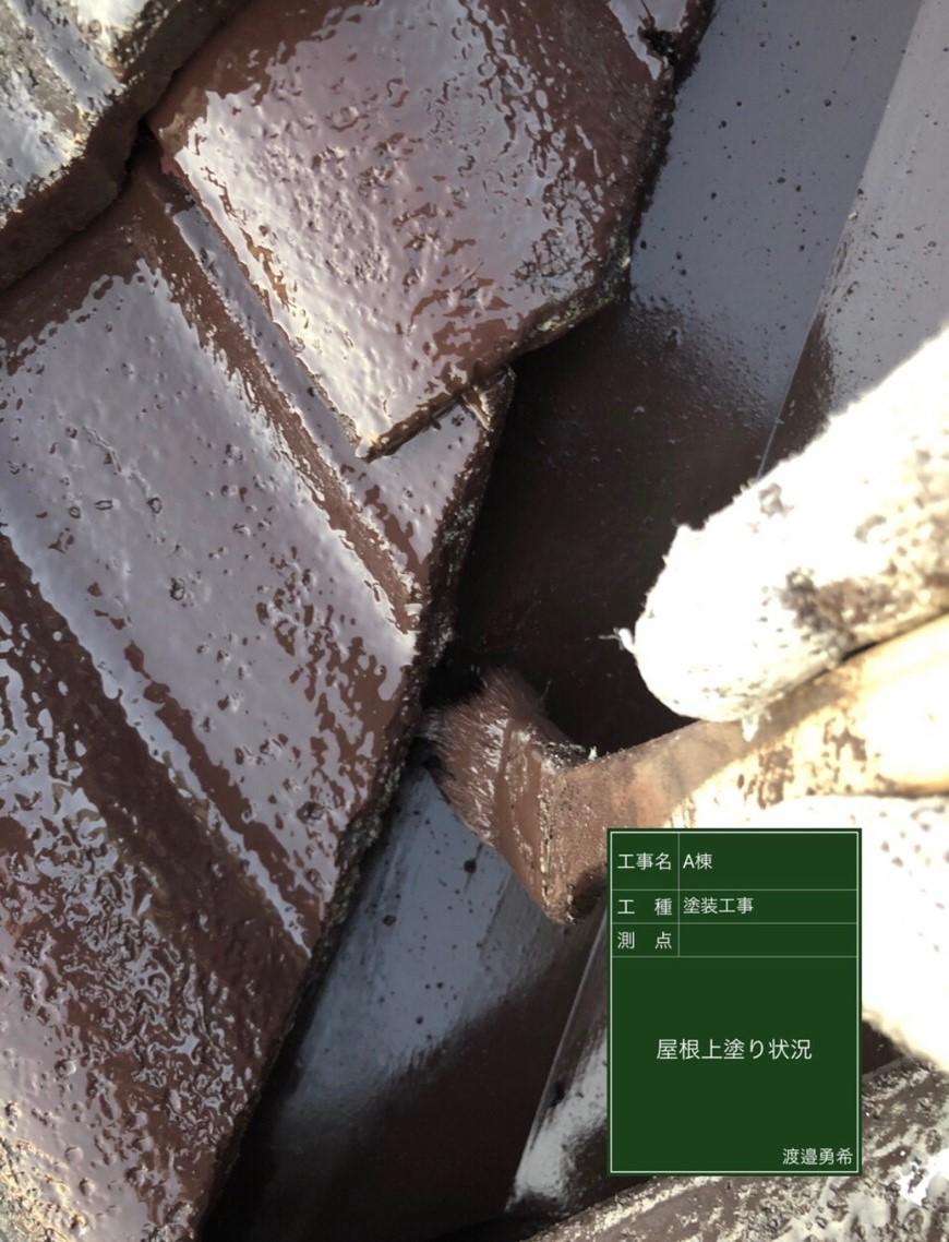 屋根上塗り(1)_M00015