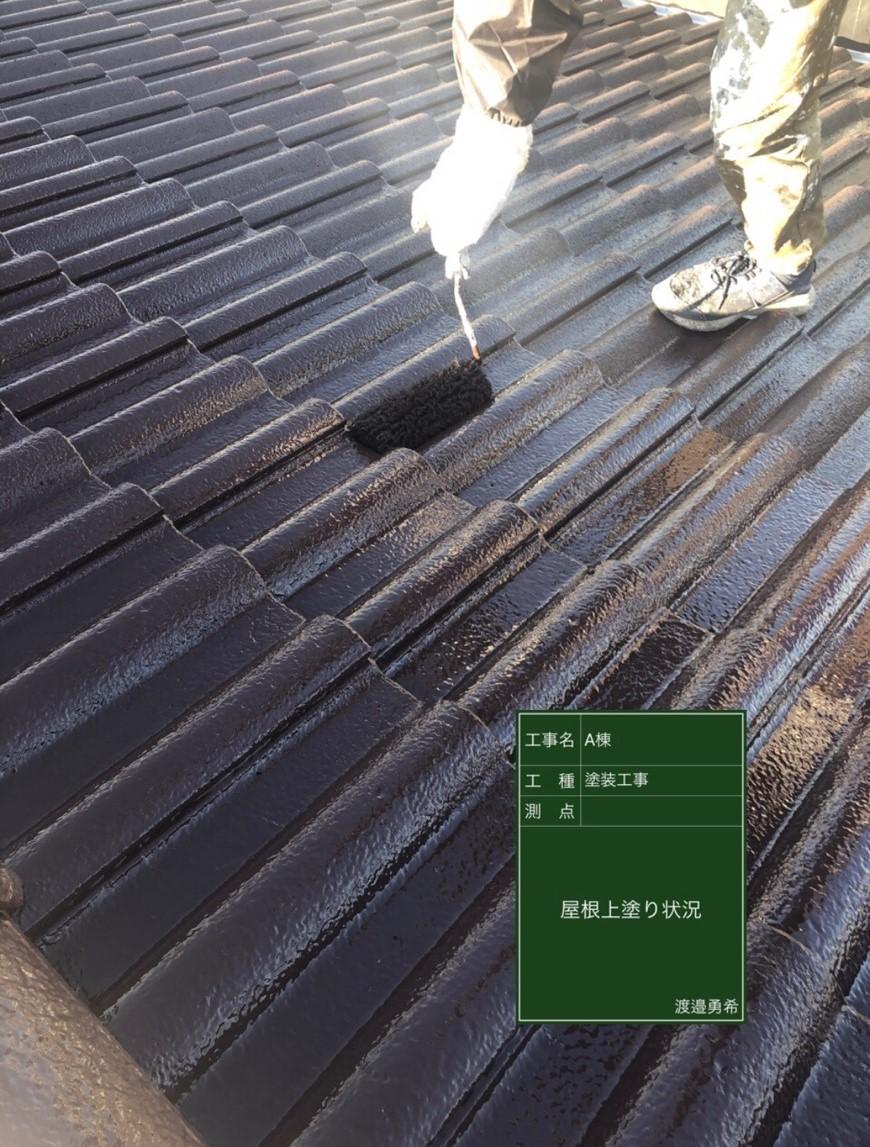 屋根上塗り(2)_M00015