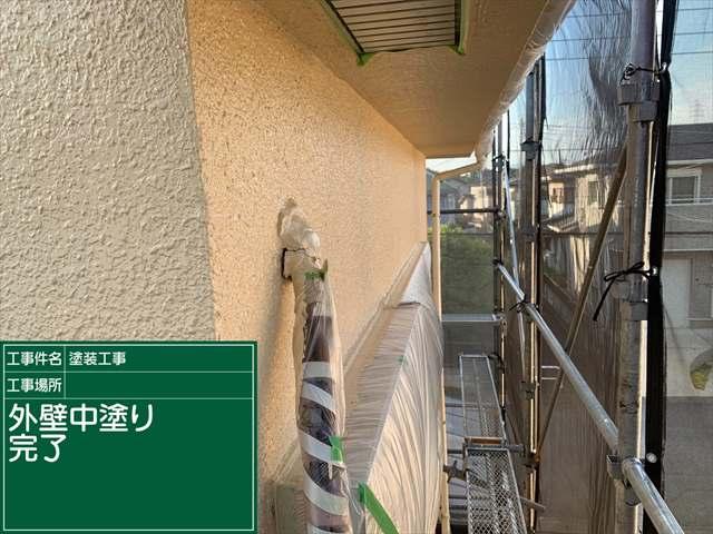 外壁中塗り_0508_M00029 (4)