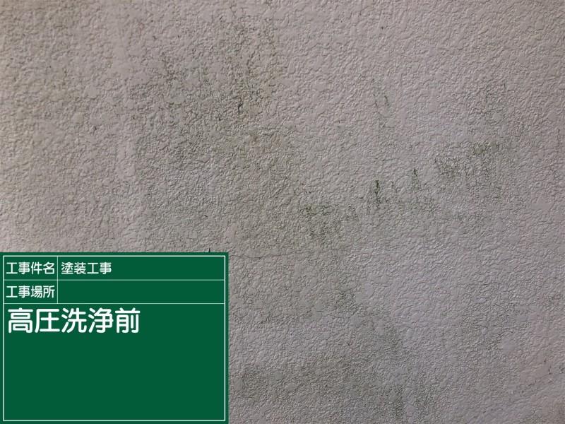洗浄①20033