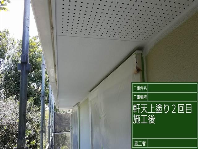 軒天2回め_0421_M00028 (2)