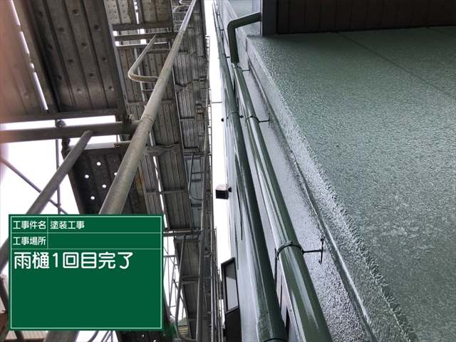 雨樋塗装_0713_M00030 (1)