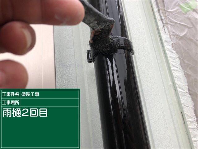 0122 雨樋2回め(1)_M00019