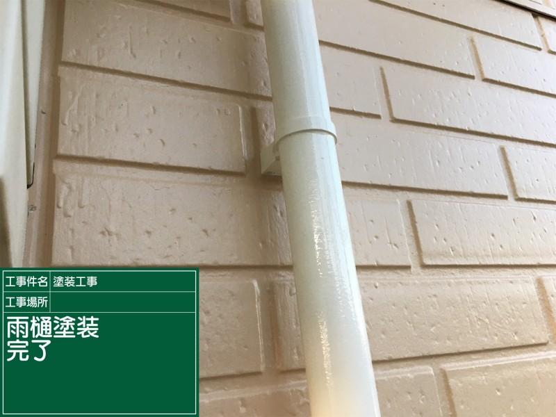 縦樋20040