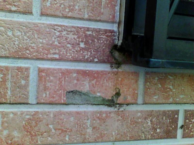 現場調査外壁サイディング破損20044