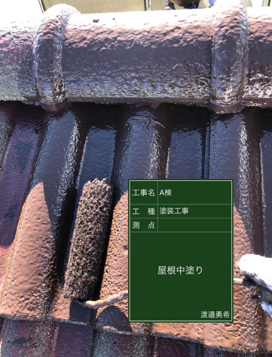 屋根中塗り_M00015