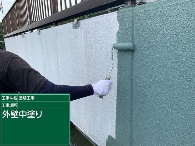 外壁中塗り_0624_M00030 (1)
