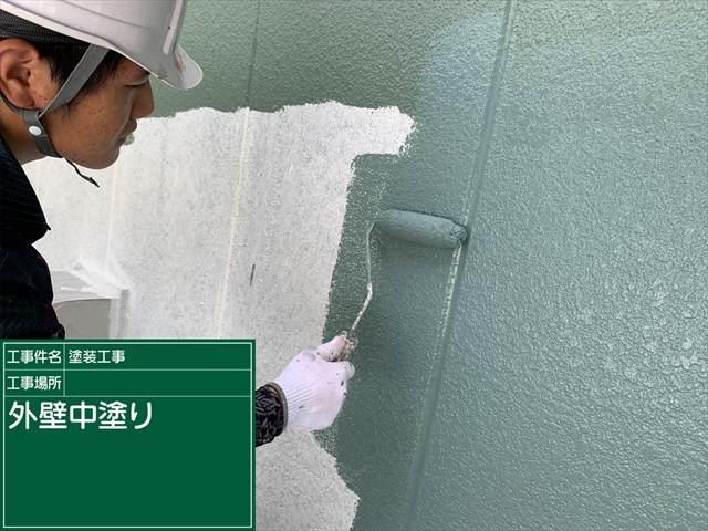 外壁中塗り_0629_M00030 (1)