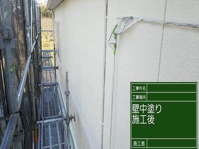 外壁中塗り_0317_M00027 (2)