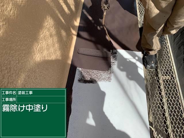 霧除け中塗り_0517_M00029 (1)